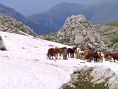 abruzzo-6-170x128 Panoramica Abruzzo - 2