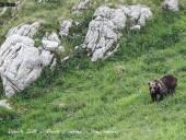 foto3-3-170x128 Panoramica Abruzzo - 2