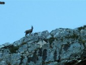 foto3-48-170x128 Panoramica Abruzzo - 2