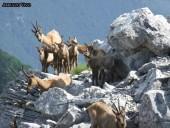 foto3-79-170x128 Panoramica Abruzzo - 2