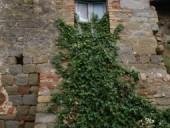 martese-6-170x128 Borghi abbandonati