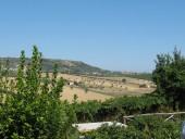 IMG_00781-170x128 Pineto estate 2007 e 2008
