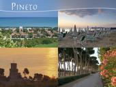 Pineto-15