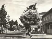 pineto-1960