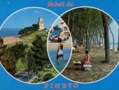 pineto-26