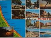 pineto-cartolina-1
