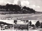 pineto-cartolina-3