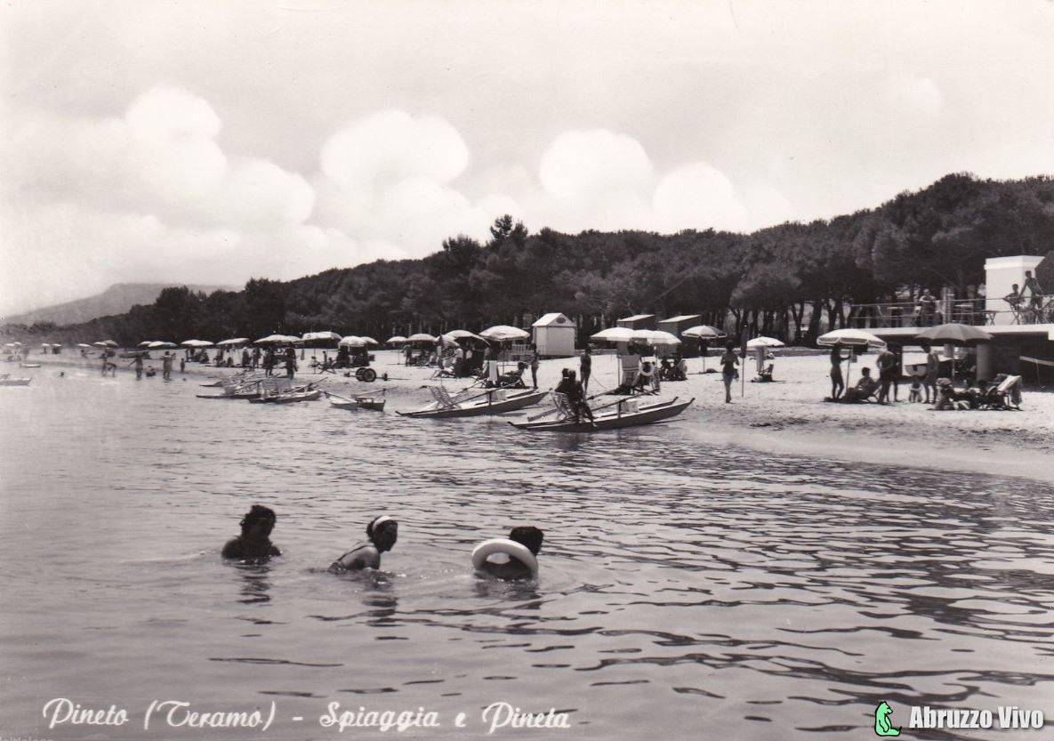 pineto-spiaggia