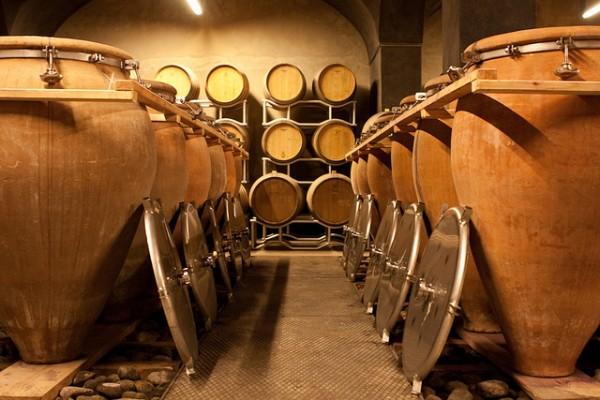 vinitaly Vitigni e vini d'Abruzzo