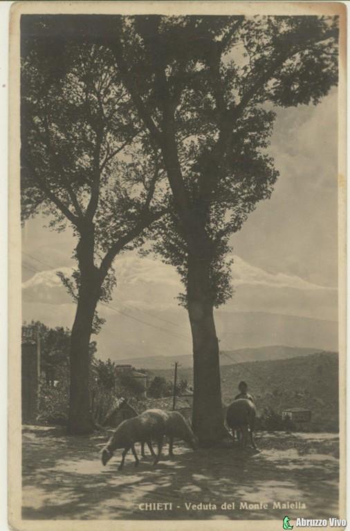 chieti-081 Dai primi del 1900 alla fine degli anni 80 attraverso le cartoline illustrate
