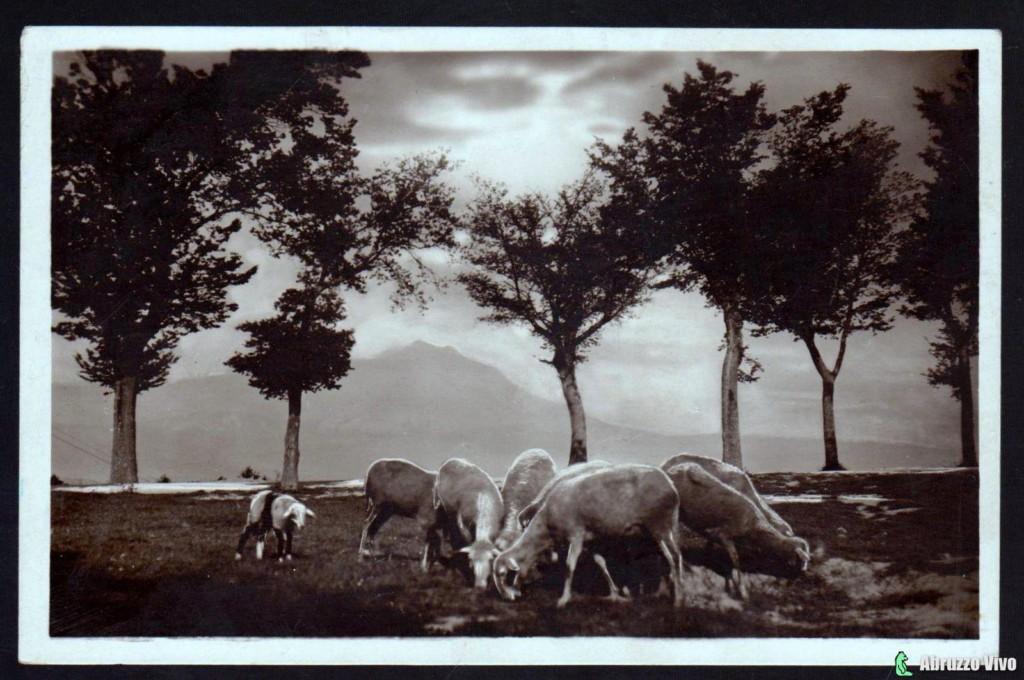 chieti-gransasso1 Dai primi del 1900 alla fine degli anni 80 attraverso le cartoline illustrate