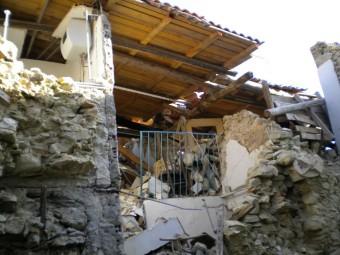 lupatonino-terremoto-18