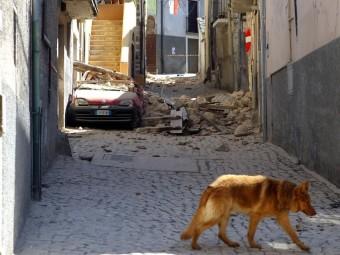 terremoto-abruzzo-42