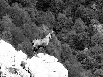 abruzzo-foto-like-41