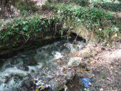 fiume_vera