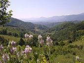 valle_della_luppa